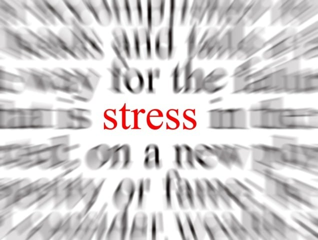 stress+2 FitLinks: Stressed? Exercise May Help Ward Off Anxiety 