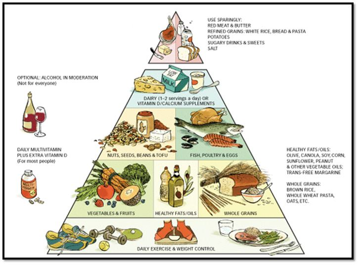 A Guide To Eating Healthy With The Food Pyramid