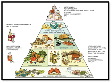 best nutrition guide Harvard healthy eating pyramid