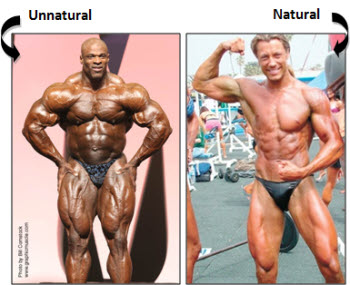 How Much Muscle Can You Gain Naturally?
