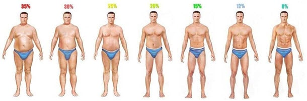 Average Body Fat Male 21