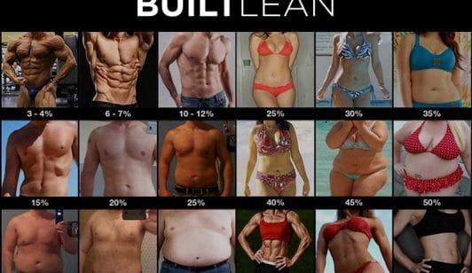 Body Fat Photos Men & Women