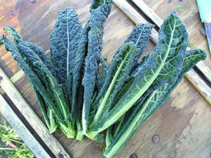 Vegetables like kale