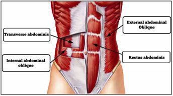 Les exercices pour les bretelles des muscles du vagin