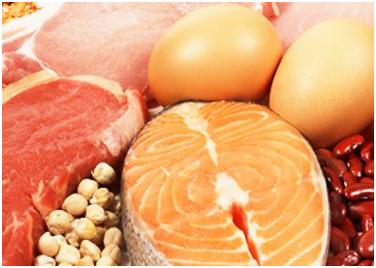 high-protein-diet-1