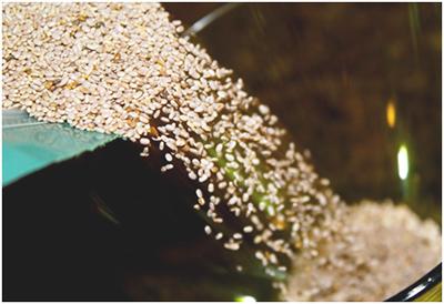 chia-seeds-1