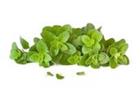 Healthy-herbs-6