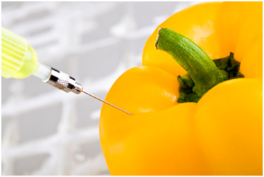 Genetically-modified-foods