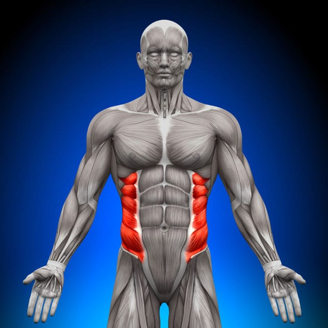What Is Rib Flare How To Prevent It Builtlean